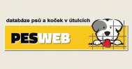 pesweb_ban700